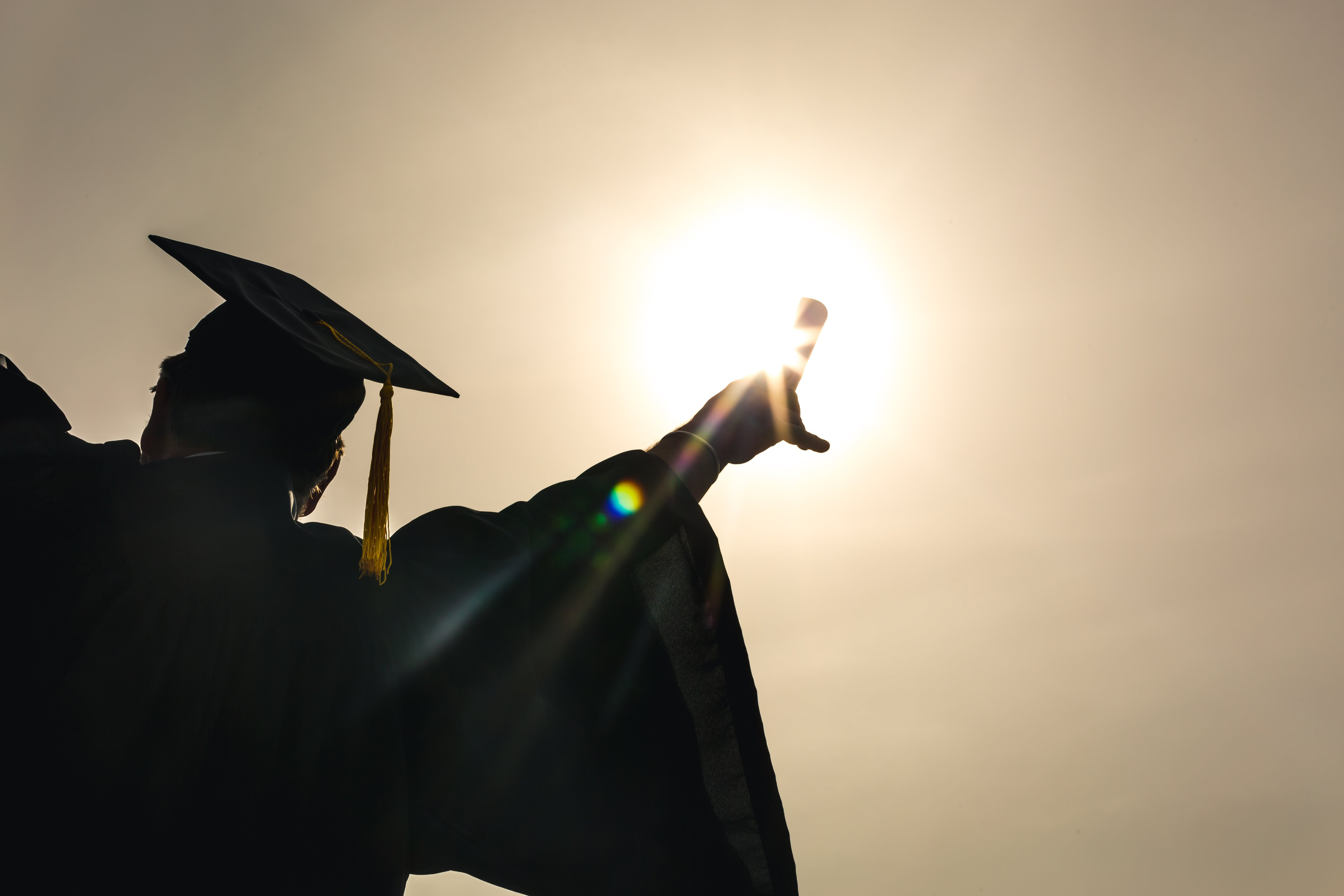 labor force trends a graduate holding a diploma bottom view